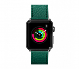 Кожаный ремешок для Apple Watch 42/44 mm LAUT MILANO Emerald (LAUT_AWL_ML_GN)