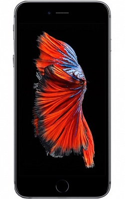 Apple iPhone 6S Plus 16GB Space Gray UA UCRF - ITMag