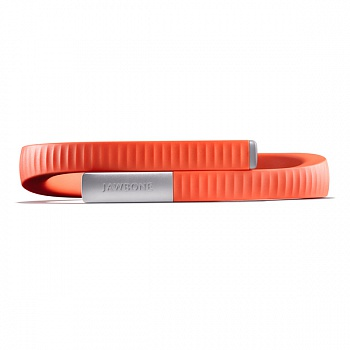 Jawbone UP24 Persimmon L - ITMag